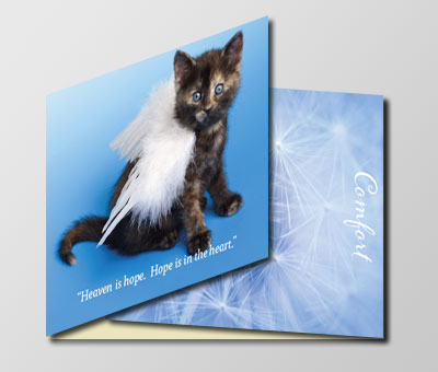 Specialty Card | Cat Loss